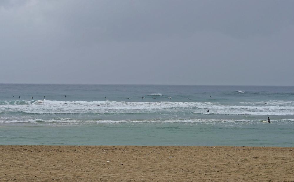カニシーズンはサーフィンのベストシーズン