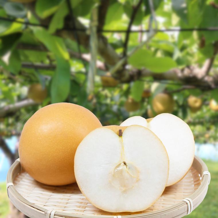 千葉県いすみ市が送る、その年最後の梨は思わず笑顔になれる梨です♪