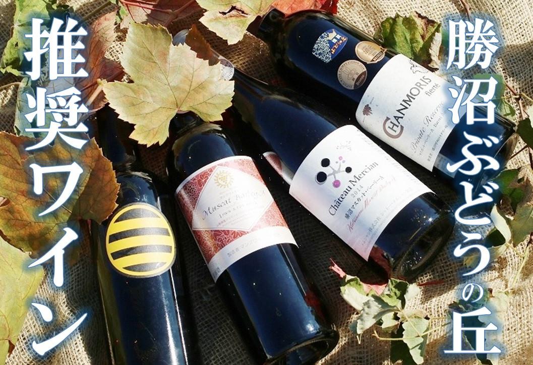 【勝沼ぶどうの丘】赤ワイン4本セット【日本ワイン】