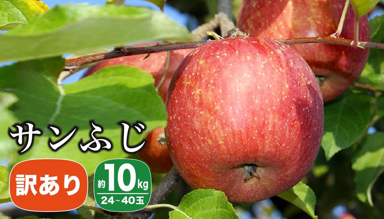 甘味と酸味のバランスが良く食べやすいりんご