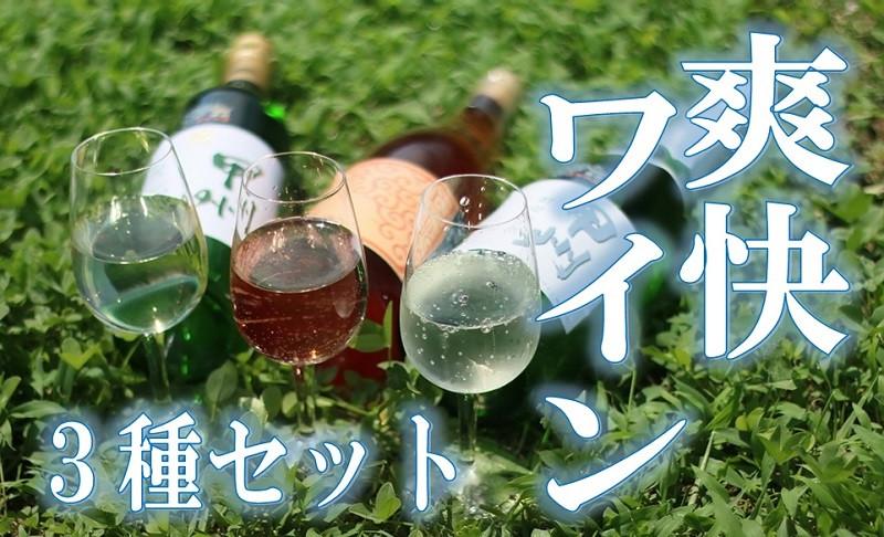 【勝沼ぶどうの丘】爽快ワイン3種セット【日本ワイン】