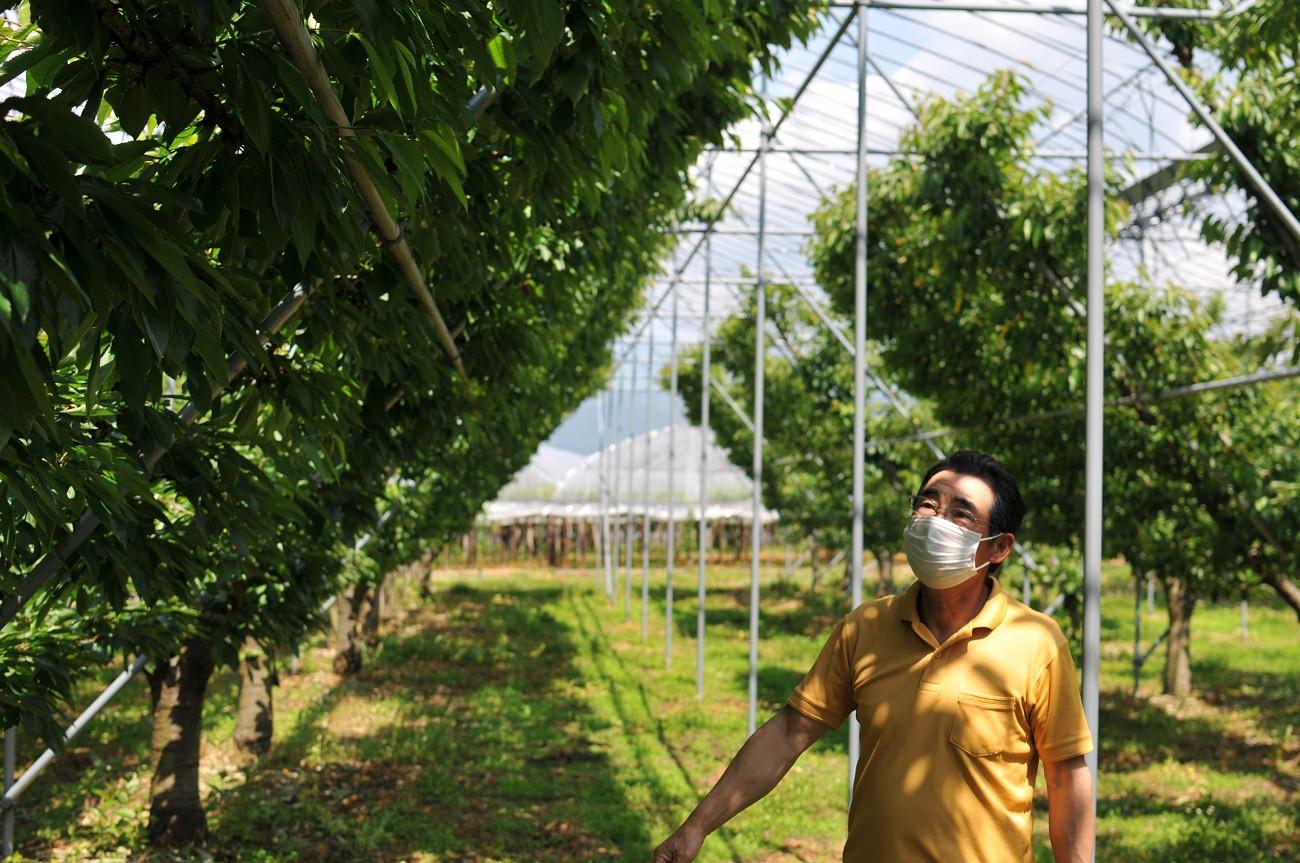 こちらは「遠藤果樹園」への支援寄附となります。