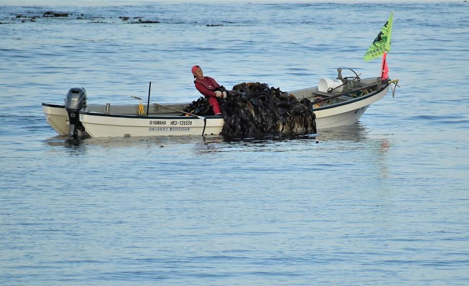 川尻さんは水揚げ量も地区でトップクラスです!