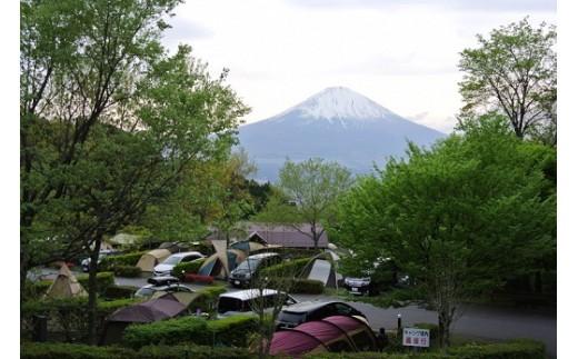 乙女森林公園 第2キャンプ場