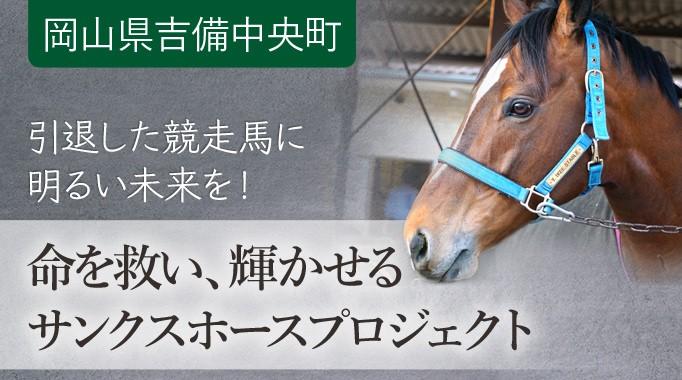 競馬で沸かせたあの馬は今…引退馬を守りたい!馬たちに明るいセカンドキャリアを