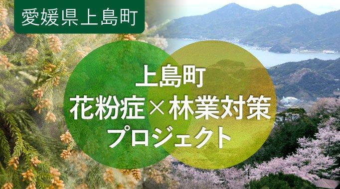 花粉症対策×海へと繋がる島の山林を守りたい