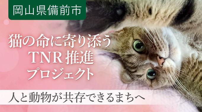 猫の命を守るTNRを推進し、人と動物が共存できるまちへ