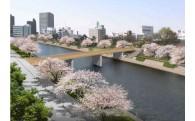 (仮称)乙川人道橋の準備作業【岡崎の顔づくり】