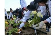 花と緑の景観形成事業活動状況について