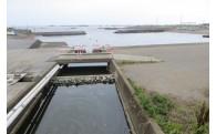 家庭排水をきれいに浄化してから海に流します