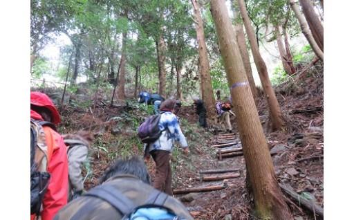 「花沢城跡」を整備しました