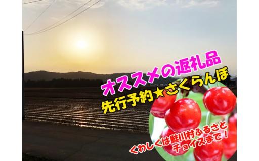 鮭川村・春便り♪ ~たそがれのさけがわ~