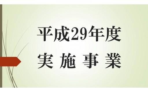 【平成29年度実施事業】