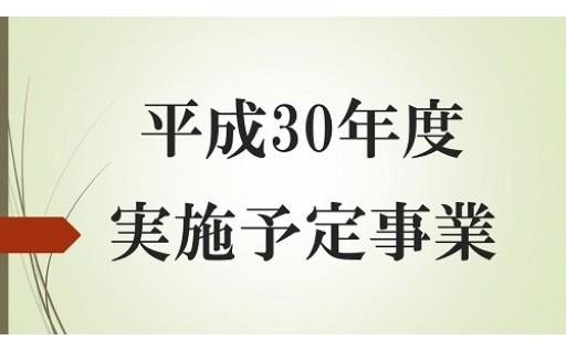 【平成30年度実施予定事業】