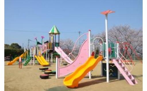 平成29年度牛頭天王公園複合遊具等設置工事に活用