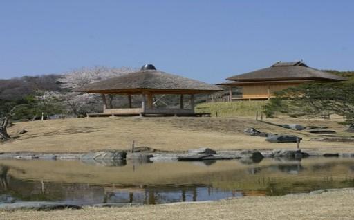 名勝楽山園 昆明池 のしゅんせつ土を除去しました