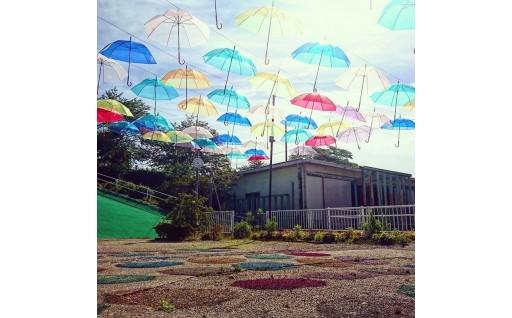 梅雨空をアンブレラスカイが彩ります!
