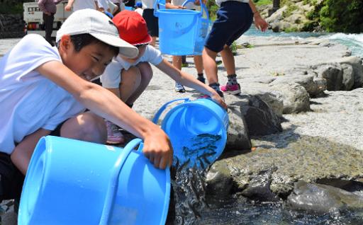 子どもたちが四万十川源流に稚鮎の放流