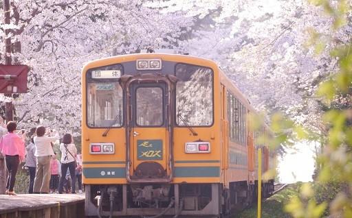 津軽鉄道の魅力を発信 ア・モーレ活動にご寄附活用