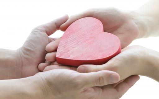 高齢者支援、子育て支援等の福祉向上に関する事業