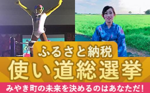 投票受付中です!使い道総選挙2018!