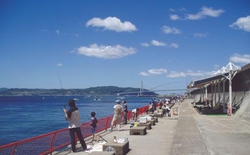 神戸の海、魚を守りたい