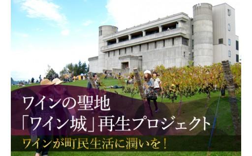 百年の大計!池田町のルーツを伝えきれる施設へ!