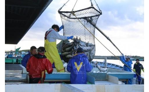 漁業の担い手を確保