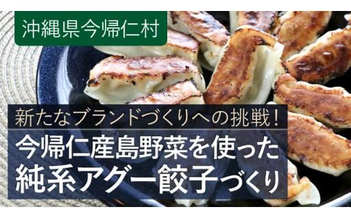 今帰仁村の新しいブランドづくりへ挑戦!