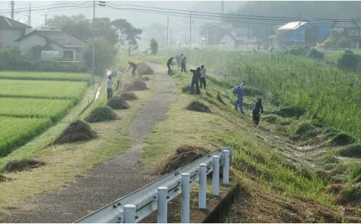 霧島市は『河川景観保全活動』を応援しています!