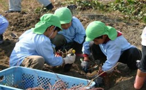 未来を担う子どもの教育及び少子化対策に関する事業
