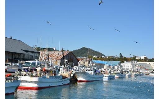 広尾町で獲れる希少な魚の維持増大に活用しています