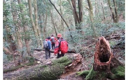 「多良岳200年の森」活性化施設整備事業