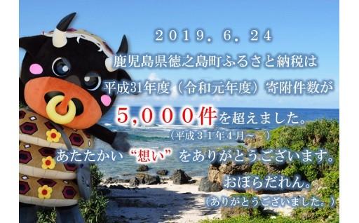 寄附件数が5,000件を超えました。