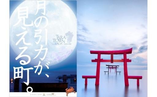 月の引力が見える町の「海中鳥居」
