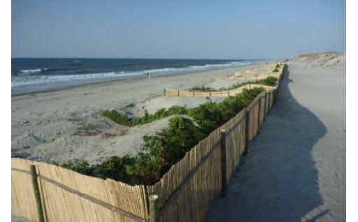 掛川の砂浜を守る~堆砂垣を設置~
