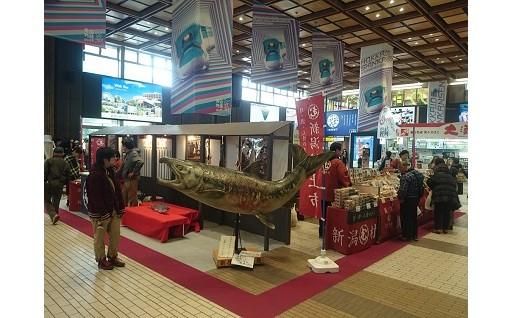 新潟空港からの瀬波温泉ライナーなど2次交通に支援