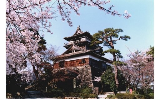 【文化】目指せ国宝化!丸岡城周辺賑わい創出事業