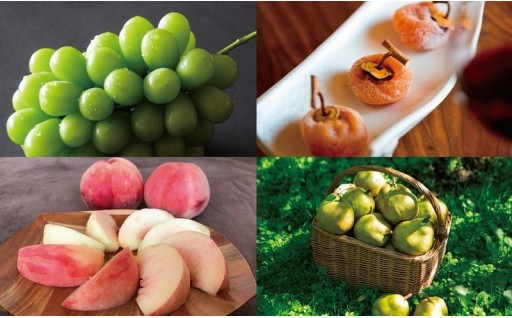 より高品質な果物を生産することができています!