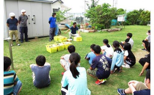 台風被害からの房州びわ復活プロジェクト