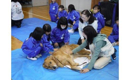 人と動物が共生できる社会へ!