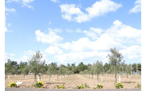 未来につなぐ福井の農業活性化プロジェクト