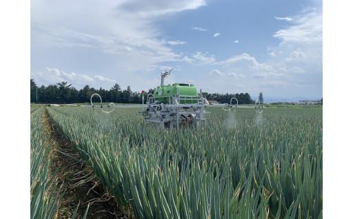 農業課題解決!アグリテックビジネスコンテスト実施