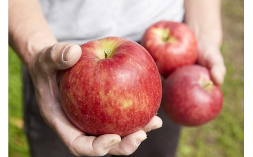 これからも美味しいりんごをお届けするために!