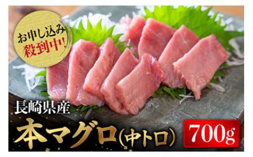 【人気返礼品が復活】長崎県産 本マグロ 中トロ