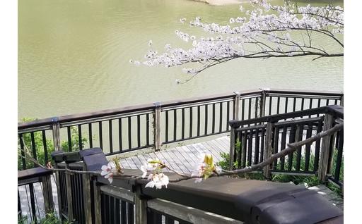 佐久間ダム公園の手すりを修理しました