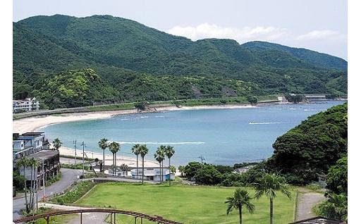 きれいな海岸を維持するために!