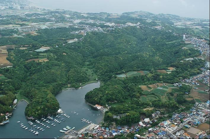7.自然豊かな三浦市にするために