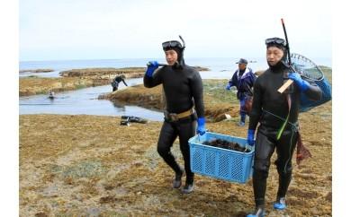4 農山漁村地域活性化基金