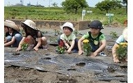 (3)環境の保護・保全に関する事業